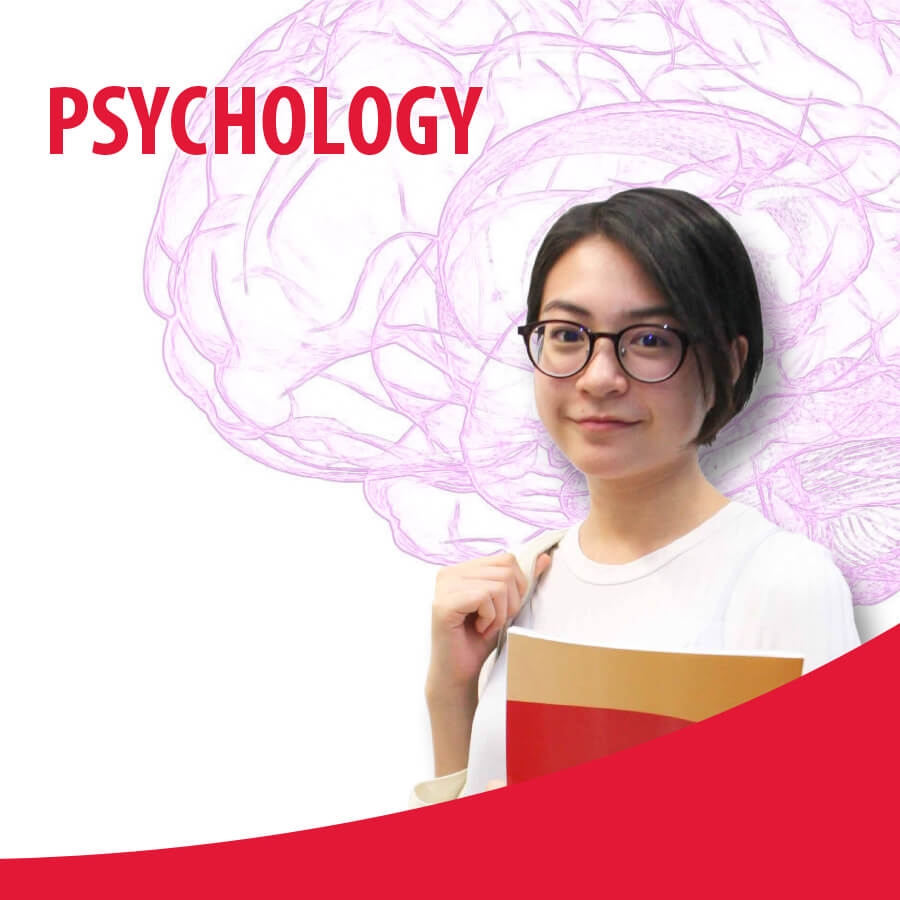Psychology Course 2017