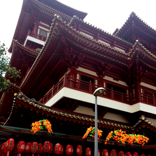 TMC Academy Hawthorn Student Works: Beginner 2 in Chinatown - Temple Frog View