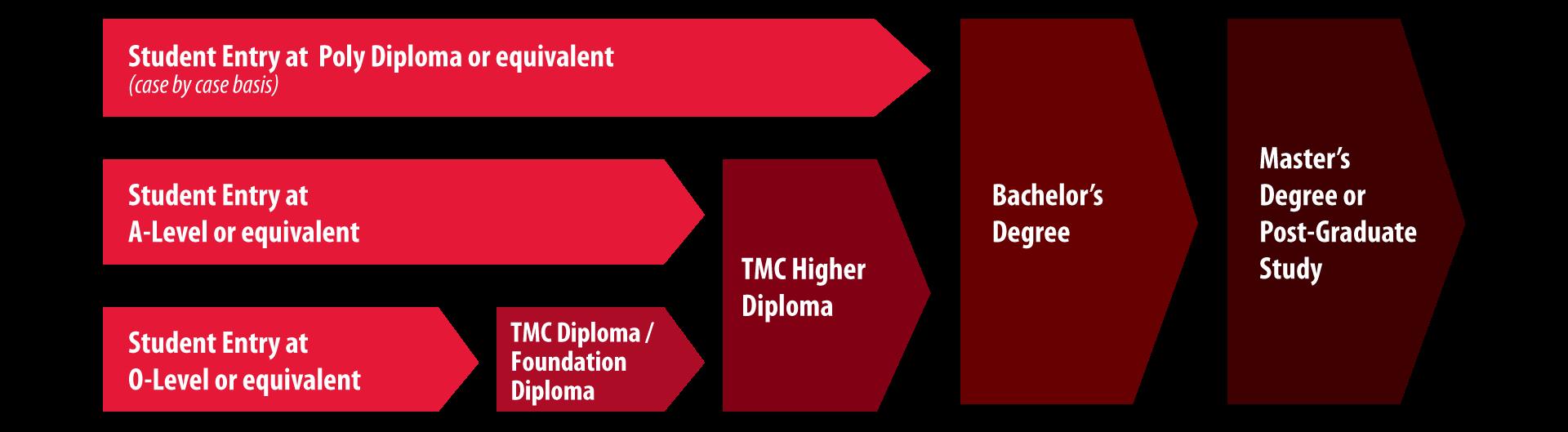 TMC Academy Progressive Pathway May 2017
